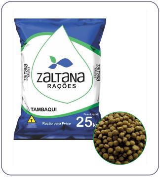 Tambaqui